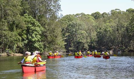 Bonville Creek, Bongil Bongil National Park. Photo: A Turbill