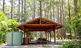 Bongil picnic area, Bongil Bongil National Park. Photo: Rob Cleary