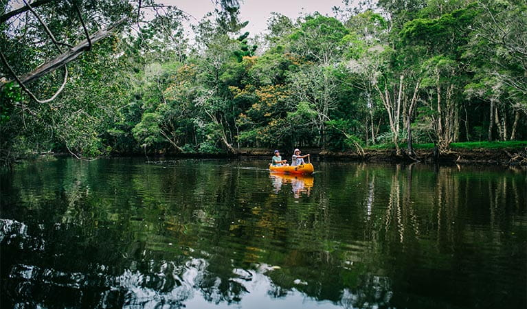View of  2 people canoeing on Pine Creek, with a tree branch in the foreground and creek bank in background. Photo: Jay Black/OEH.