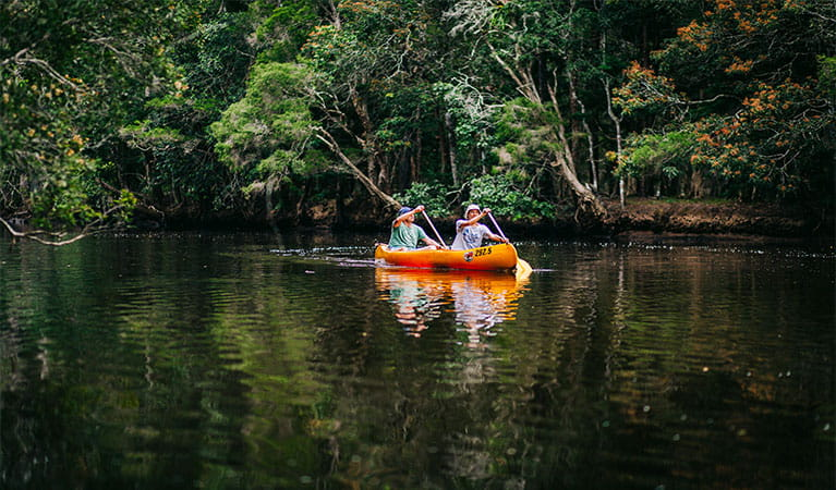 Man and woman paddling on the still waters of Pine Creek, against a background of lush forest. Photo: Jay Black/OEH.