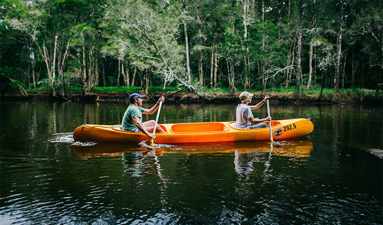 Man and woman paddling on Pine Creek, against a background of dense casuarina and paperbark forest. Photo: Jay Black/OEH.