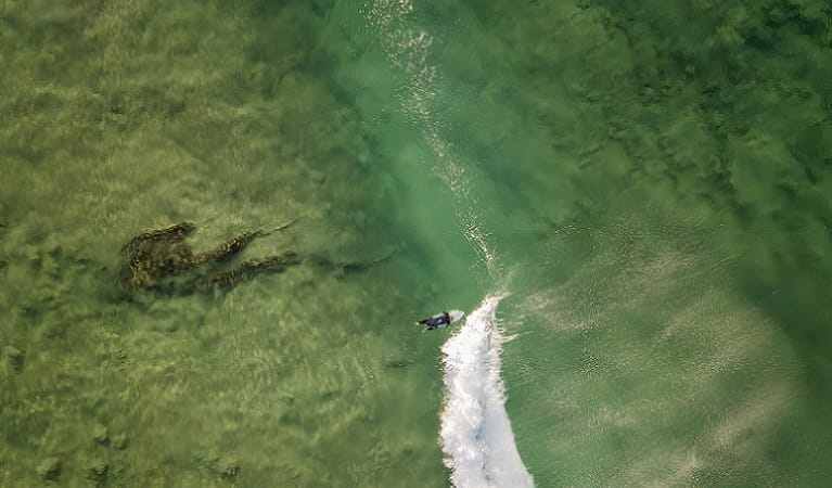 Aerial view of surfer in the water close to Tuckers Rocks Cottage. Photo: John Spencer/DPIE