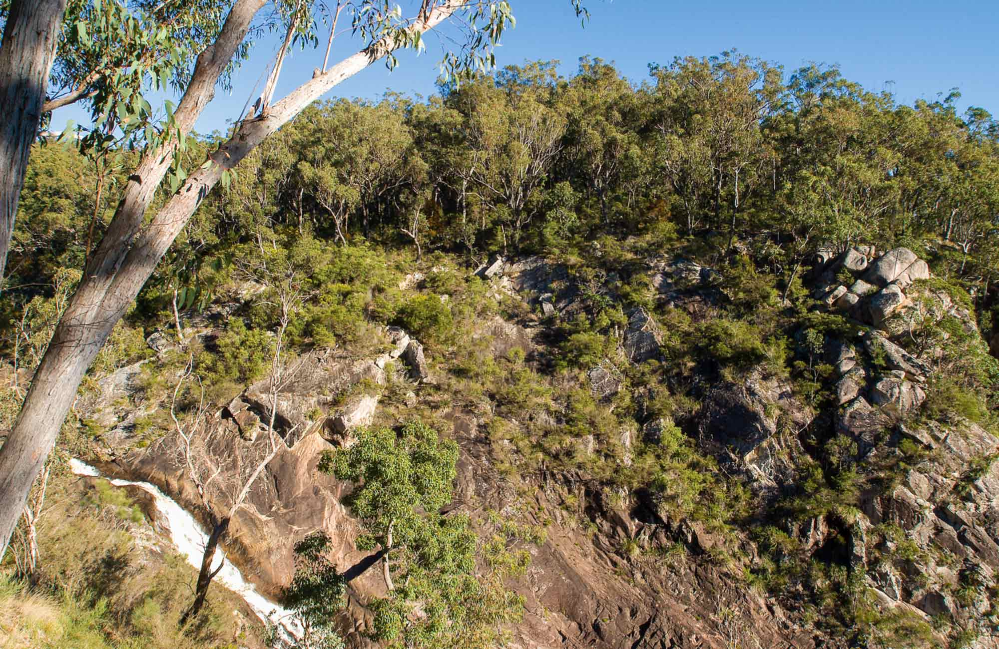 Boonoo Boonoo falls picnic area, Boonoo Boonoo National Park. Photo: David Young