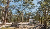 Caravan at Cypress Pine campground in Boonoo Boonoo National Park. Photo: David Young &copy: David Young