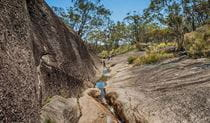 Morgans Gully, Boonoo Boonoo National Park. Photo: David Young