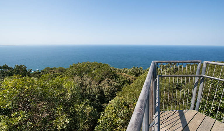 Viewpoint atop tower along Cape Hawke lookout walk, Booti Booti National Park. Photo credit: John Spencer © DPIE
