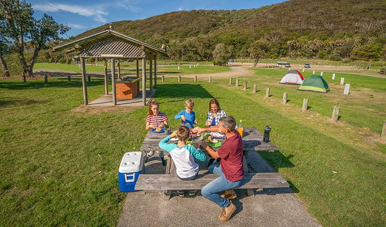 A family enjoys a barbecue lunch at The Ruins campground and picnic area, in Booti Booti National Park. Photo credit: John Spencer & copy; DPIE