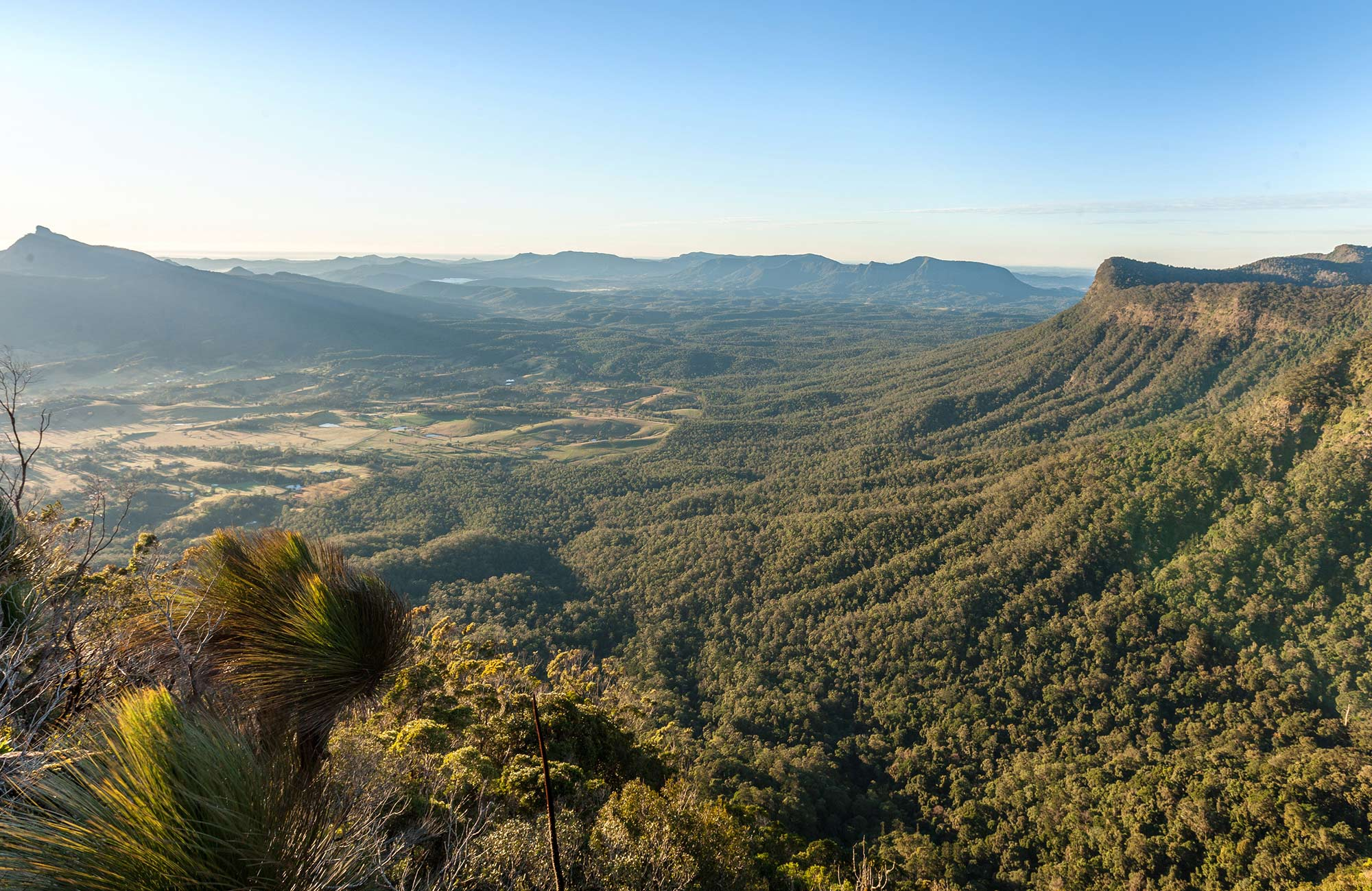 Views of Tweed Valley and Wollumbin seen from Pinnacle lookout, Border Ranges National Park. Photo credit: Murray Vanderveer © DPIE