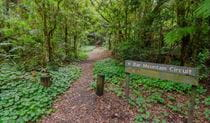 Sign at start of Bar Mountain circuit walking track, Border Ranges National Park. Photo credit: John Spencer © DPIE