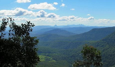 Views from Bar Mountain lookout in Border Ranges National Park. Photo credit: Stephen King © Stephen King