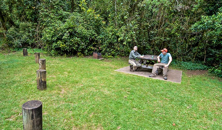 Two men sit at a picnic table at Bar Mountain picnic area, Border Ranges National Park. Photo credit: John Spencer © DPIE