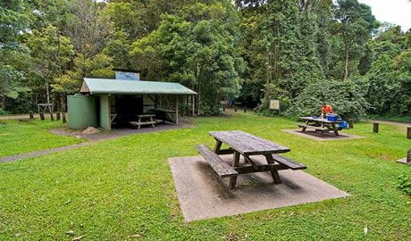 Picnic tables and shelter at Bar Mountain picnic area, Border Ranges National Park. Photo credit: John Spencer © DPIE
