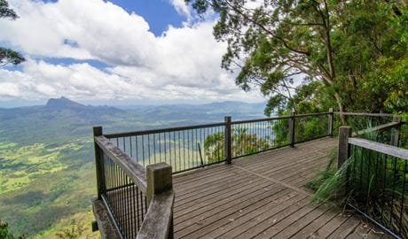 Viewpoint at Blackbutt lookout picnic area in Border Ranges National Park. Photo credit: John Spencer © DPIE