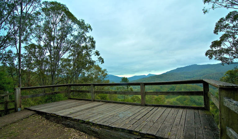 Timber viewing platform at Border Loop lookout, Border Ranges National Park. Photo credit: John Spencer © DPIE
