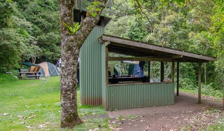 Picnic shelter at Forest Tops campground, Border Ranges National Park. Photo credit: John Spencer © DPIE