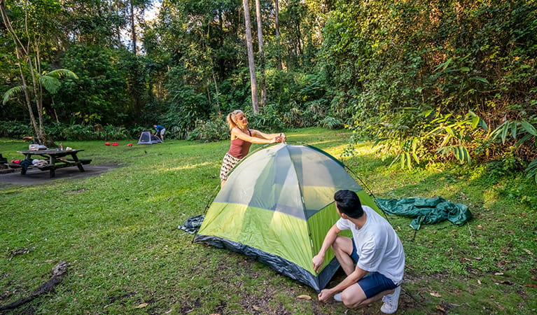 Visitors pitching a tent at Sheepstation Creek campground in Border Ranges National Park. Photo credit: John Spencer © DPIE