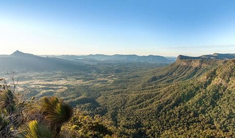 Views towards Wollumbin (Mt Warning) from Pinnacle lookout, Border Ranges National Park. Phot credit: Murray Vanderveer © DPIE