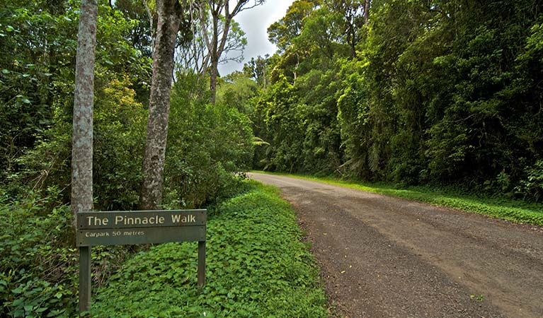 Signage at carpark for The Pinnacle walk, Border Ranges National Park. Photo credit: John Spencer © DPIE