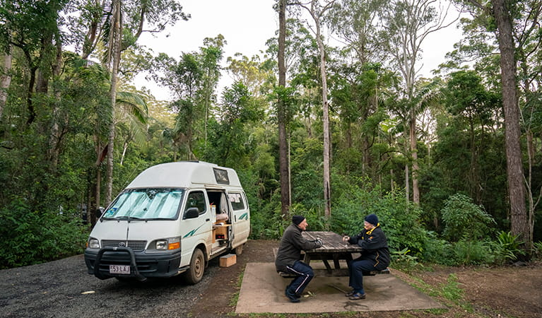 Campervan at Sheepstation Creek campground, Border Ranges National Park. Photo: DPIE/ John Spencer