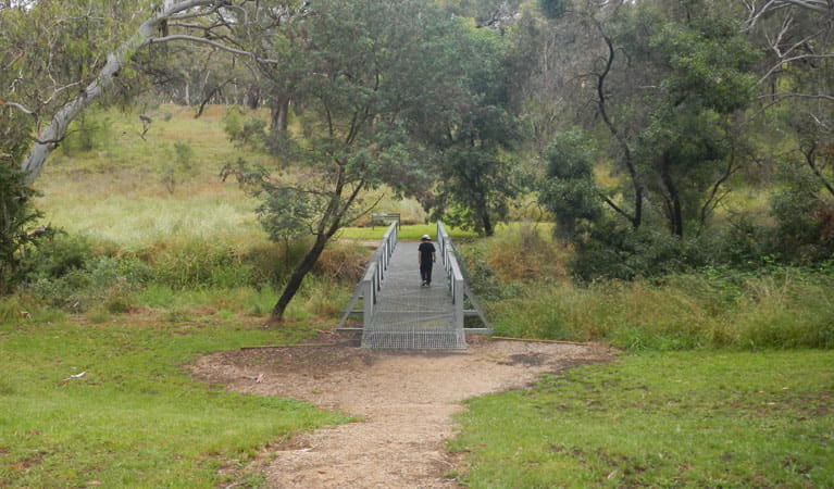 Person walking on a bridge, Borenore Karst Conservation Reserve. Photo: Debby McGerty © DPIE