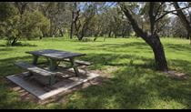 Picnic table in Borenore picnic area. Photo: © Ian Brown