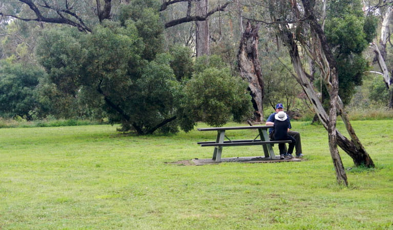 Person sitting at a table in Borenore picnic area. Photo: Debby McGerty