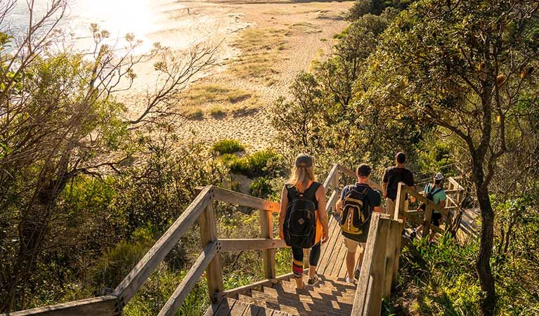A group of friends walking down a wooden staircase from Bouddi coastal walk to a beach, in Bouddi National Park. Photo: John Spencer/DPIE.