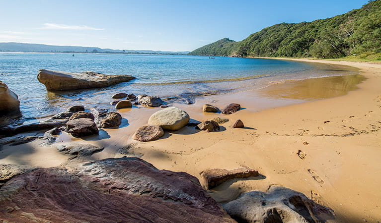 Lobster Beach, Bouddi National Park. Photo: John Spencer