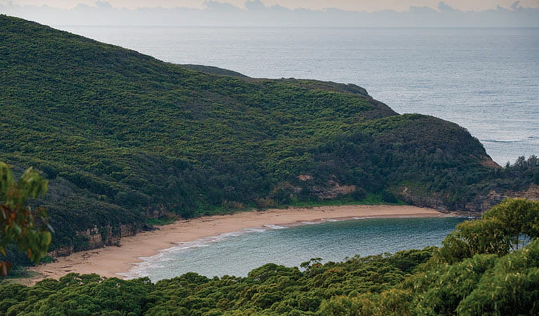 View looking down to Maitland Bay in Bouddi National Park. Photo credit: Nick Cubbin. <HTML>&copy; OEH
