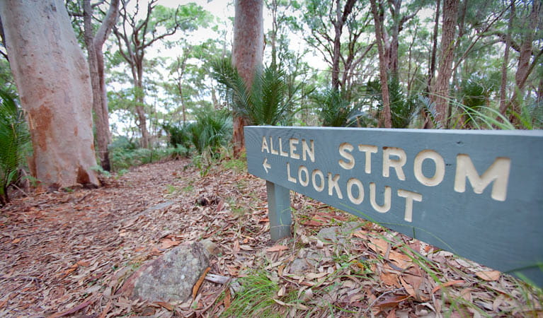 Allen Strom lookout directional sign in Bouddi National Park. Photo: Nick Cubbin