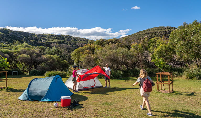 People setting up tents at Tallow Beach campground, Bouddi National Park. Photo: John Spencer/DPIE.