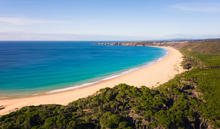 Aerial view of a beach in Bournda National Park. Photo: Daniel Tran/DPIE