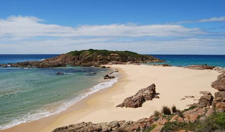 Bournda Island, Sandy Creek loop track, Bournda National Park. Photo: BECC/NSW Government
