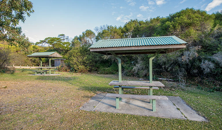 Picnic shelters at Turingal Head picnic area in Bournda National Park. Photo: John Spencer/DPIE