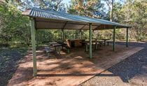 Brimbin picnic area, Brimbin Nature Reserve. Photo: John Spencer
