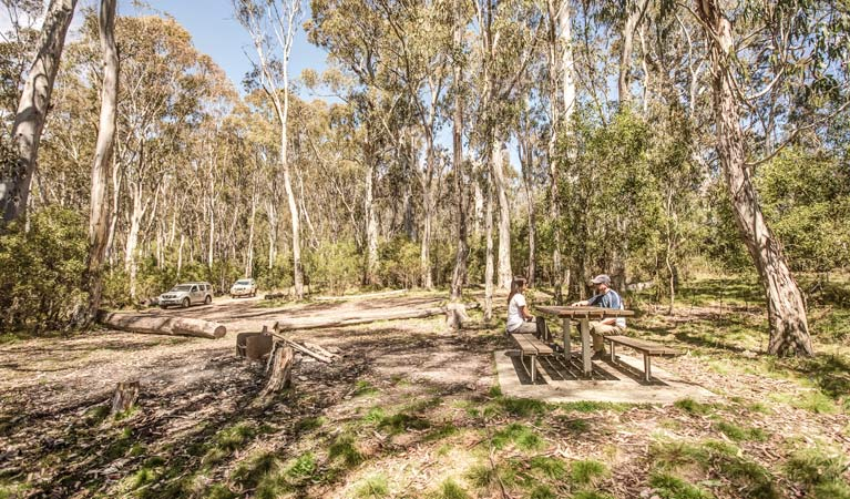 Corree campground, Brindabella National Park. Photo: Murray van der Veer/NSW Government