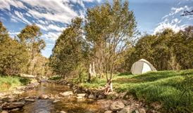 Flea Creek campground, Brindabella National Park. Photo: Murray van der Veer/NSW Government