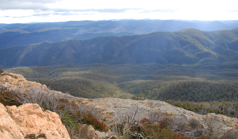 Brindabella National Park. Photo: NSW Government