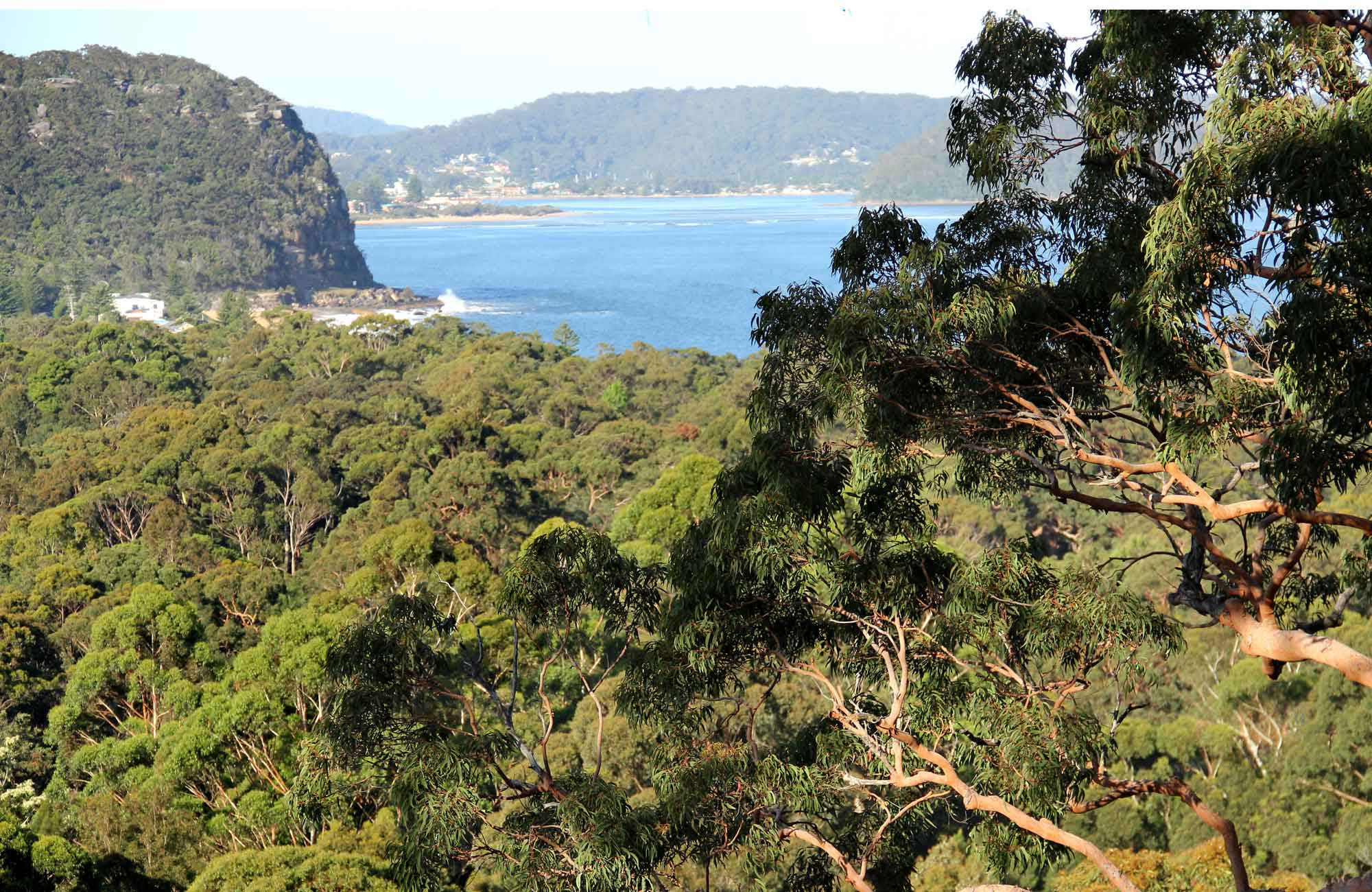 Patonga to Pearl Beach, Brisbane Water National Park, Photo: John Yurasek/NSW Government