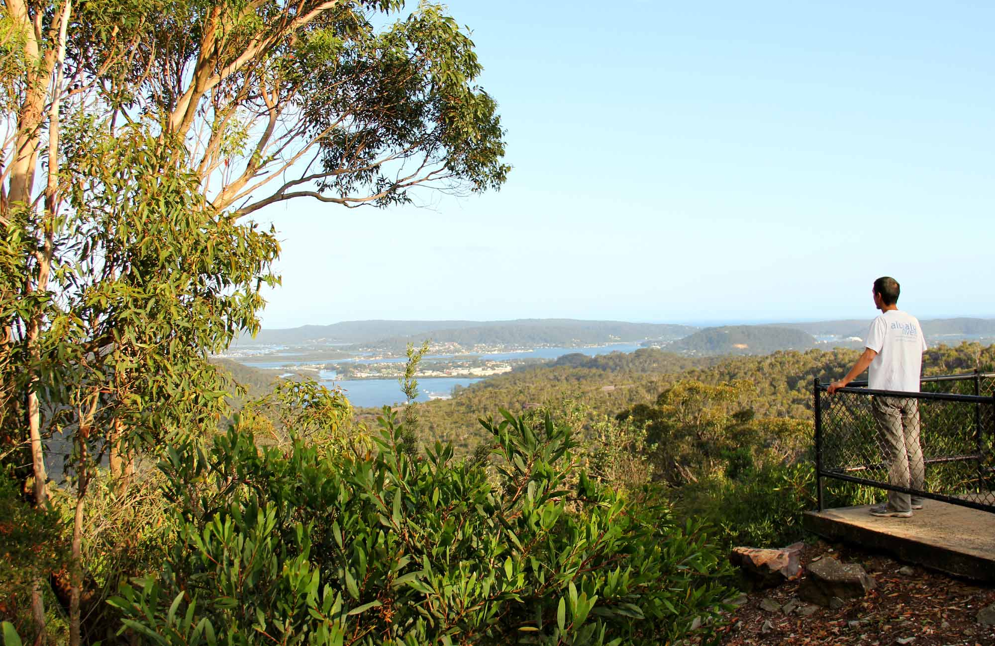 Staples lookout, Brisbane Water National Park. Photo: John Yurasek/NSW Government