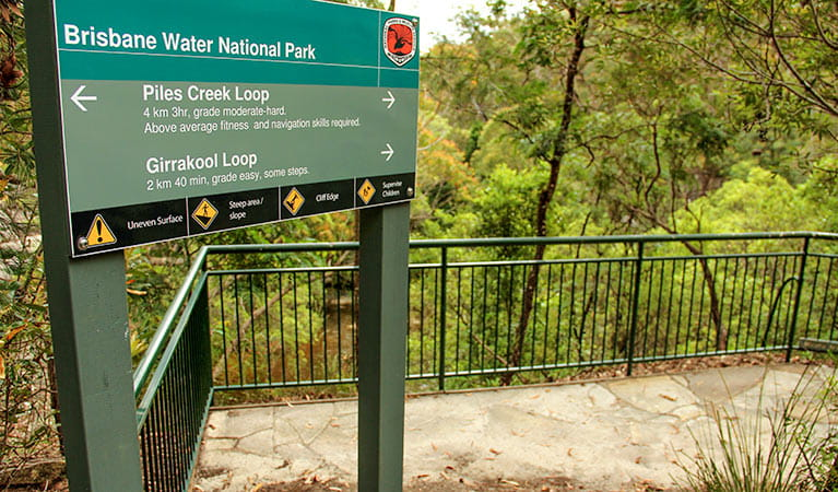 Girrakool loop track, Brisbane Water National Park. Photo: John Yurasek