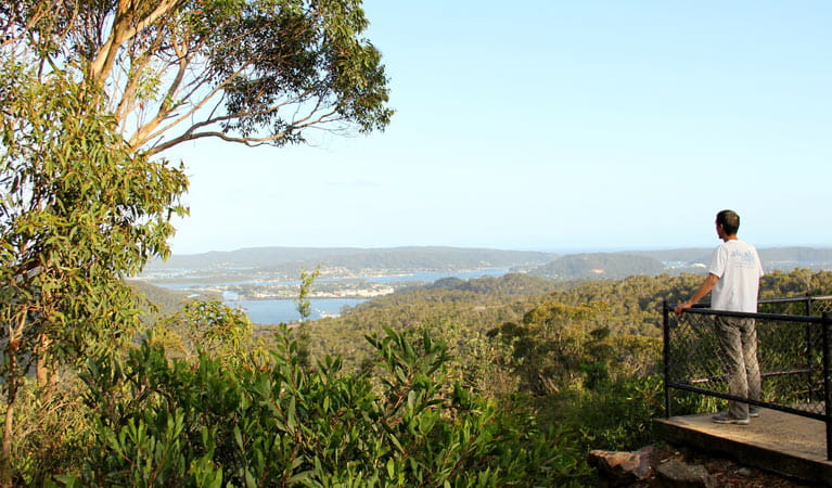 Staples lookout, Brisbane Water National Park. Photo: John Yurasek
