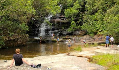Somersby Falls picnic area, Brisbane Water National Park. Photo: John Yurasek
