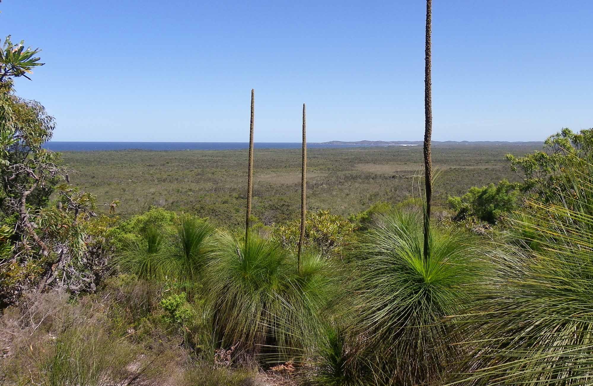 Broadwater inland lookout, Broadwater National Park. Photo: