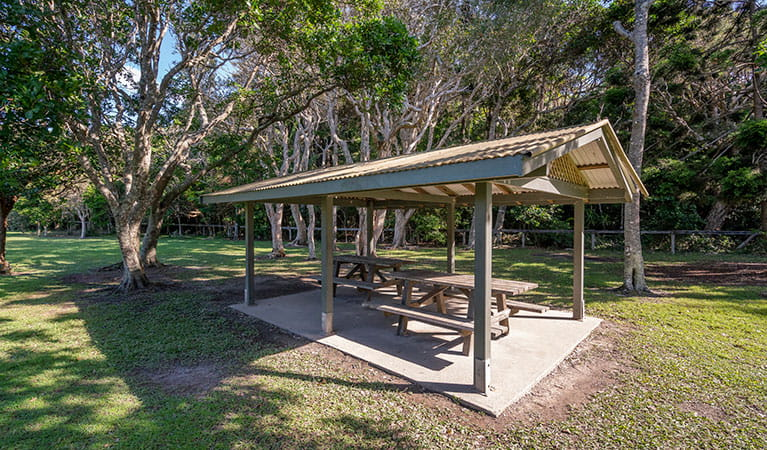 Picnic shelter at Broken Head picnic area in Broken Head Nature Reserve. Photo: John Spencer/DPIE