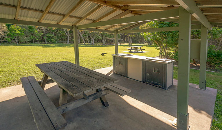 Picnic shelter with a picnic table and barbecue at Broken Head picnic area in Broken Head Nature Reserve. Photo: John Spencer/DPIE