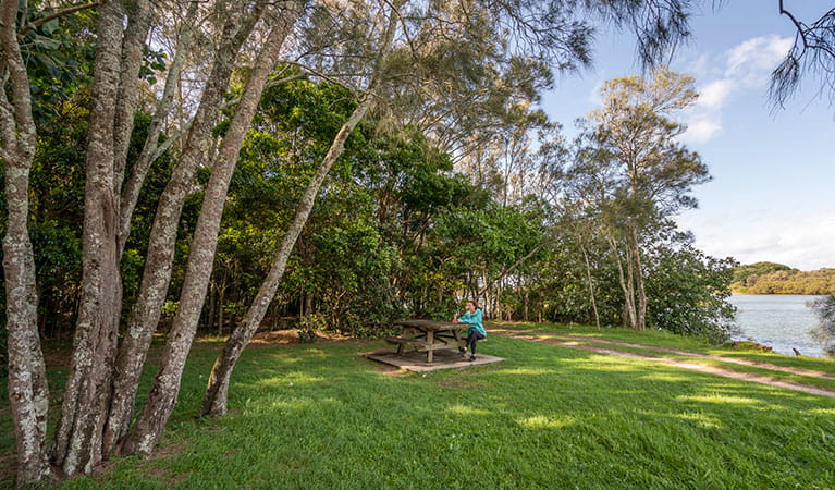 A woman sitting at a picnic table surrounded by trees in Brunswick River picnic area, Brunswick Heads Nature Reserve. Photo: John Spencer/DPIE