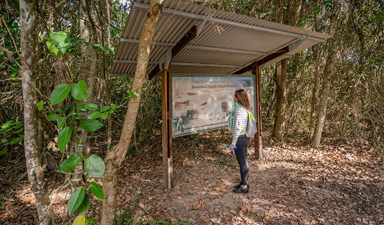 A woman reading information on a sign about Brunswick Heads Nature Reserve at North Head walking track. Photo: John Spencer/DPIE