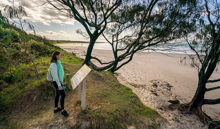 A woman reading an information sign by the beach along North Head walking track in Brunswick Heads Nature Reserve. Photo: John Spencer/DPIE
