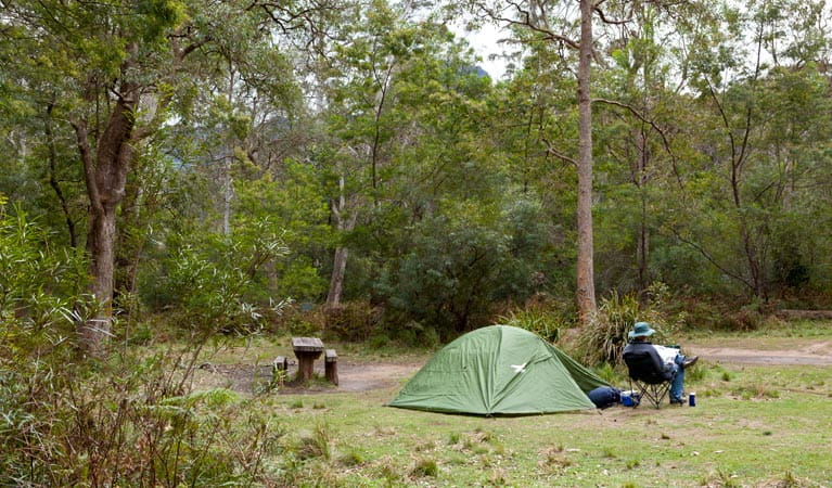 Long Gully picnic area, Budawang National Park. Photo: Lucas Boyd
